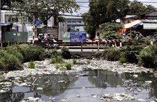 """[Video] Làng ung thư ở huyện Ứng Hòa """"khát"""" nước sạch nghiêm trọng"""
