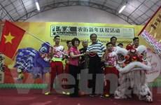 Việt Nam tham gia Cuộc thi múa lân quốc tế lần thứ 9 tại Singapore