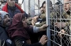 EU miễn cưỡng chấp thuận hoãn thực thi Hiệp ước Schengen