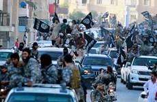 Mỹ tăng cường hợp tác với Saudi Arabia trong cuộc chiến chống IS
