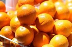 Ăn lê, cam và táo giúp giảm nguy cơ bị các bệnh về tim mạch