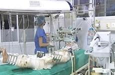 Hội chẩn liên viện điều trị 3 chiến sỹ trong vụ máy bay rơi