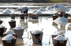WHO kêu gọi người dân Việt Nam không nên lạm dụng muối