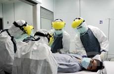Diễn tập cách ly, điều trị bệnh nhân nghi nhiễm Ebola tại Việt Nam