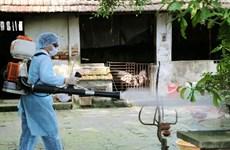 Không có thêm ca tử vong do sốt xuất huyết trong tháng 11