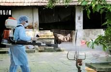 Lâm Đồng phối hợp các ban ngành trong phòng chống bệnh dịch