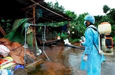 Phú Thọ: Đẩy mạnh phòng chống dịch bệnh tại huyện miền núi