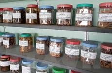 Đề xuất danh mục dược liệu nhập khẩu với hơn 500 loại đã mã hóa