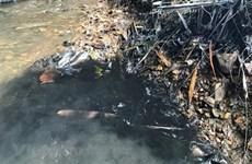 Kế hoạch hành động khắc phục sự cố ô nhiễm nước sạch Sông Đà