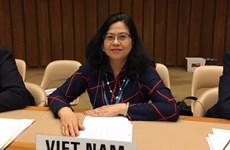 Trò chuyện với người Việt đầu tiên được bổ nhiệm làm lãnh đạo WHO