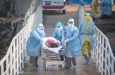 Số liệu mới nhất về các trường hợp tử vong do dịch COVID-19