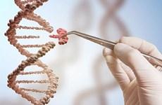 Hiểu rõ về hệ miễn dịch của cơ thể để phòng chống bệnh do virus