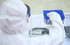 279 người khỏi bệnh, Việt Nam chỉ còn 22 ca dương tính SARS-CoV-2
