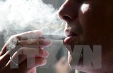 Không có sản phẩm thuốc lá nào vô hại hoàn toàn với sức khỏe