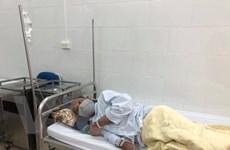 Bộ Y tế: Giám sát chặt chẽ bệnh Whitmore tại các tỉnh miền Trung