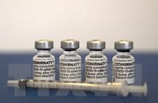 Bộ Y tế phê duyệt vaccine Comirnaty phòng COVID-19 của Pfizer/BioNTech