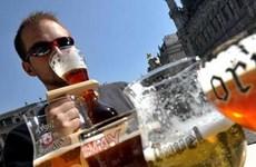 Bỉ trở thành tân vô địch cuộc thi bia quốc tế 2013