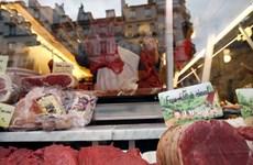 Phát hiện vụ bê bối thịt ngựa nghiêm trọng tại Pháp
