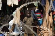 Phác thảo bức tranh kinh tế đa sắc của châu Phi 2014