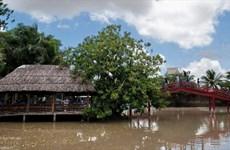 Khu du lịch Vinh Sang - Đồng bằng sông Cửu Long thu nhỏ