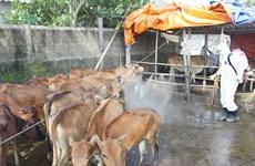 Bắc Ninh bổ sung gấp 3,3 tỷ đồng phòng chống dịch bệnh