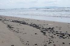 Dầu vón cục tiếp tục tràn vào bãi biển Vũng Tàu