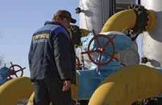 Nga sẵn sàng đàm phán về khí đốt khi Ukraine thanh toán nợ