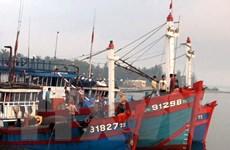 Ngư dân Bình Thuận vững mạnh vươn khơi, bảo vệ chủ quyền