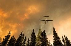 Cháy rừng tại khu bảo tồn hoang dã quốc gia của Mỹ