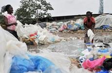 Tội phạm môi trường gây thiệt hại hàng trăm tỷ USD mỗi năm