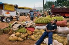 Quốc hội Cuba tìm hiểu nguyên nhân kinh tế phát triển chậm