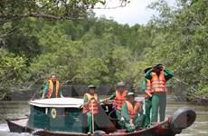 Đầm nuôi tôm tự phát đang xóa sổ rừng ngập mặn Đồng bằng sông Cửu Long