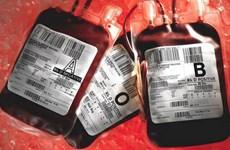 Cảnh báo nguy cơ lây nhiễm viêm gan từ người hiến máu
