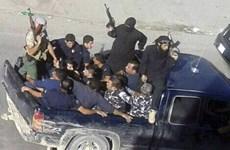 Liban: Xung đột gần biên giới Syria làm 4 người thiệt mạng
