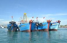 Xử phạt 8 tàu giã cào tàn phá môi trường ven bờ biển Quảng Nam