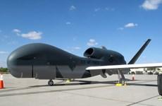 Nhật Bản quyết định mua 3 máy bay không người lái Global Hawk
