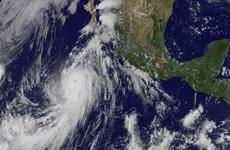 Xuất hiện dồn dập bão lớn tại khu vực Trung Mỹ và Caribbean