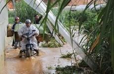 Lâm Đồng: Mưa lớn gây ách tắc khu vực cửa ngõ Đà Lạt
