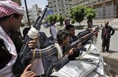 Yemen: Giao tranh giữa quân chính phủ và lực lượng nổi dậy Houthi