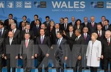 Hội nghị thượng đỉnh lần thứ 26 của NATO chính thức khai mạc