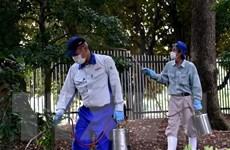 Nhật Bản: Đóng cửa công viên Shinjuku Gyoen phòng dịch sốt xuất huyết