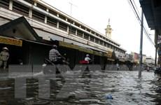 Triều cường dâng cao gây ngập lụt, vỡ đê ở Cần Thơ và Sóc Trăng