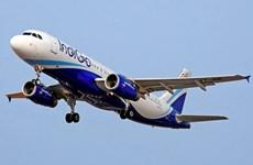 Hãng hàng không Ấn Độ đặt mua 250 chiếc máy bay Airbus A320