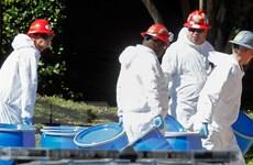 WHO: Số người thiệt mạng do virus Ebola lên đến 4.500 người