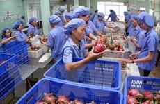 Hoa quả Việt Nam từng bước chinh phục thị trường thế giới
