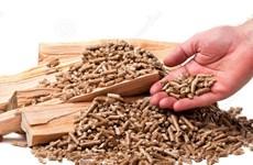 Ứng dụng sản xuất viên đốt Biomass từ phế phụ phẩm nông nghiệp