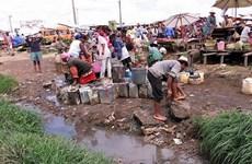 WHO cảnh báo nguy cơ bùng phát dịch hạch ở Madagascar