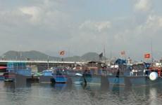 TP. Hồ Chí Minh nghiêm cấm tàu thuyền ra khơi từ 0 giờ ngày 11/12