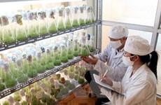 Công nghệ quyết định sự gia tăng giá trị sản phẩm nông nghiệp