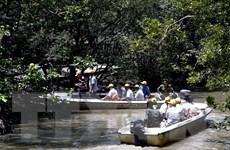 Nhộn nhịp thị trường du lịch Tết, các tour nội địa hút khách